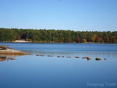 In this view of #Yawgoog Pond from the Deer Cove campsite is a rarely seen line of boulders off the southern tip of Submarine Island.  An October 12, 2014, image by David R. Brierley.