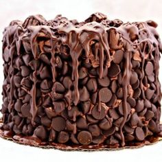 Chocolate Wasted Cake