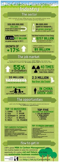 Carbon Management Industry Infographic