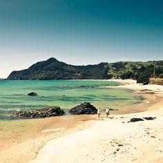 New Zealand Beach.