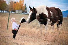 """""""horsie...meet lil horsie"""""""