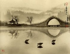 photography in the style of chinese art