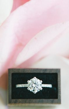 the DREAM ring.