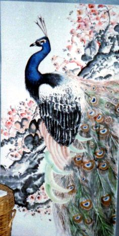 Chinese painting, peacock