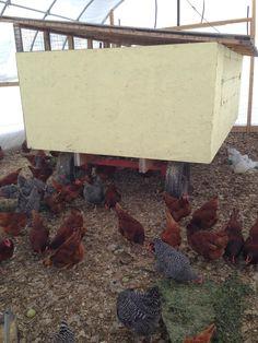 GrassStain Farm