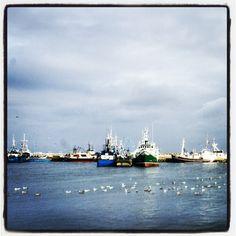 Port rybacki Władysławowo, Szkuner, kutry rybackie w porcie, Półwysep Helski, trałowce rybackie, Ludzie Morza, Mierzeja Helska, Bałtyk, Photo by http://marynistyka.org