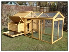 rabbit, chicken houses
