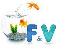 f_and_v_sound