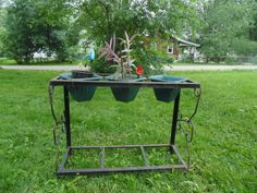 aquarium stand, plant holders, outdoor craft, turn plant, child crafts, indoor plant, children craft