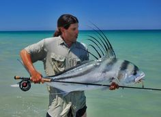 Rooster Fish on the fly!!!!! Definitely on my bucket list....
