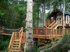 Treehouse - Pete Nelson