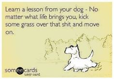 Learn a lesson from your dog…