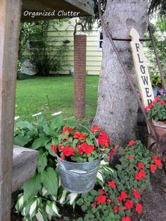 spring flowers, flower pots, garden fences