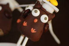 Graduation Owl Cake Pops