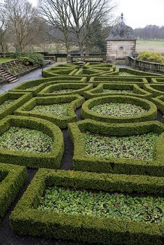 Parterre with pachysandra framed by  boxwood