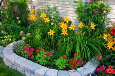 Gorgeous raised flower bed
