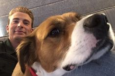 The 9 Greatest Tweets Of 2018 If You Love Chris Evans And His Dog