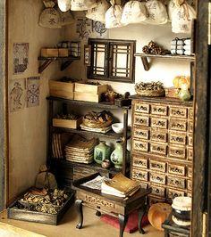 home herbal medicine pantry