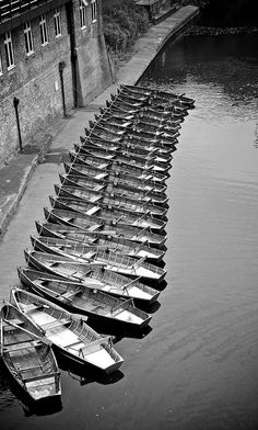 Boats in a row!