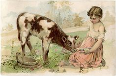 Vintage Cow and Child Graphic