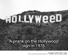 HOLLYWEED #weed #420 #Hollywood  Legalize It, Regulate It, Tax It!  http://www.stonernation.com Follow Us on Twitter @StonerNationCom