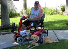Operation Freedoms Paws is a  501(c)3 non-profit organization with a mission to empower veterans and others with disabilities to restore their own independence by training and living with their own service dog.  All of our services are provided to veterans and others with disabilities at no cost to them.