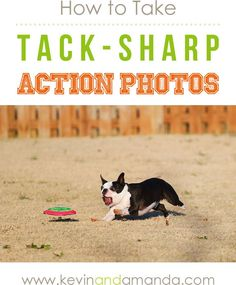 How to Get Tack-Sharp Action Photos in Five Easy Steps via kevinandamanda.com