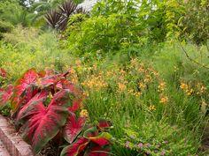 Landscape by Le jardinet