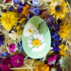 flower easter, easter eggs, press flower, trend shop