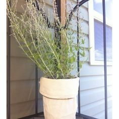 canvas wrapped flower pots. A great way to hide ugly flower pots with canvas scraps and twine!