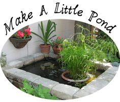 Make A Little Pond. Tips, Tricks, and Project Ideas.