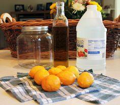 Make Your Own Lemon Dust Cloths!