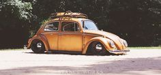 vw-beetle-1965-title vws, 65 bug, vw beetles, volkswagen classic, volkswagen beetl, old cars, bamf car