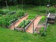 raised bed with compost