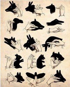 shadow play, hand puppets, hand shadows, hand art, shadow art, kid