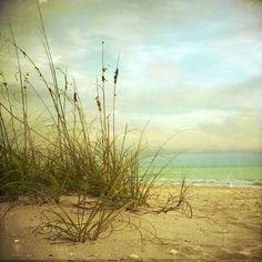 ^:The Beach