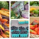Your Guide to Seasonal Eating: June   One Green Planet