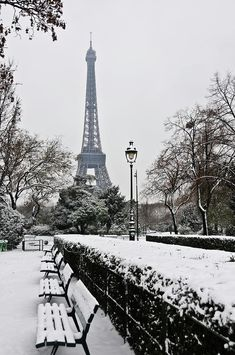 Snow Carpets Benches And Eiffel Tower