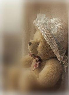 Teddy bears make you feel warm and fuzzy inside_Jennifer Bates...so true ...#parcellesdelune #teddy #ourson #bears #bearstuff