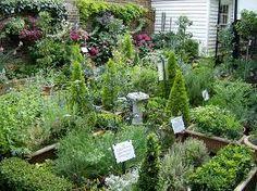 Natural Herb Garden Design