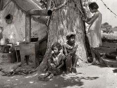 cotton, historical photos, dorthea lang, california, dorothea langemotherless