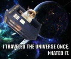 Doctor grumpy cat