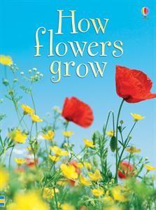 Usborne Books & More. How Flowers Grow IR