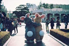 Bunny-bums.