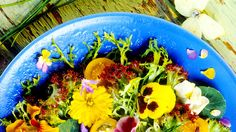 Which #flowers can you grow to eat? Find out here!