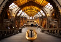 Natural History Museum  by Roland Shainidze on 500px