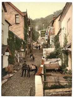 [High Street, Clovelly, England]  (LOC) by The Library of Congress, via Flickr