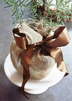 potted herb plant, wrap with burlap and tie with a pretty ribbon