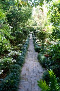 Beaufort SC  Gardens