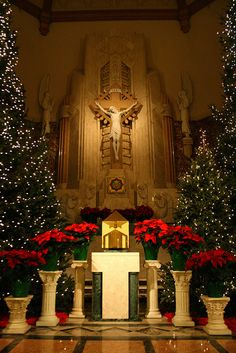 St. Thomas the Apostle Church  Bloomfield, NJ